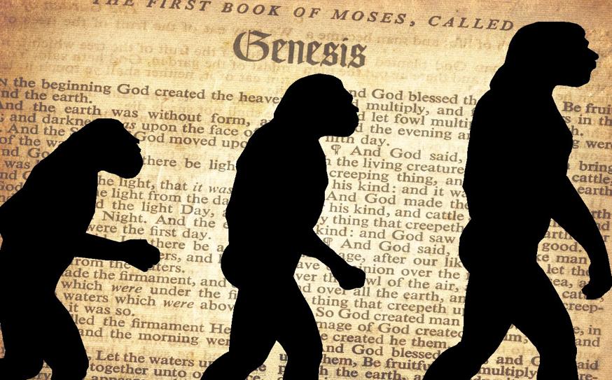 The Evolution of God's Magic Wand